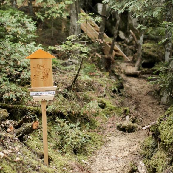 Sentier pour Krak